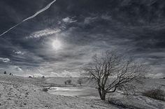 Pastures in winter.