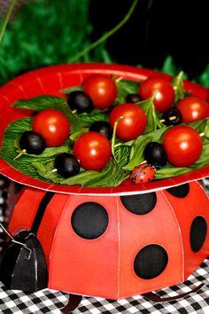 Ladybug food