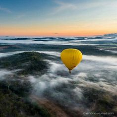 Not a bad way to start the morning...Rising above the mist for sunrise over the Tablelands, Mareeba, Queensland, Australia. Photo by andrewwatsonphoto (Instagram)