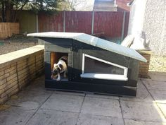 Good Free 30 Warm DIY Winter Dog House Ideas Decoration, instructions and more Strategies A safe area for your dog A dog kennel is a great decision to supply your dogs protected exit all thr Pallet Dog House, Build A Dog House, Dog House Plans, House Dog, House Building, Building Plans, Modern Dog Houses, Cool Dog Houses, Winter Dog House