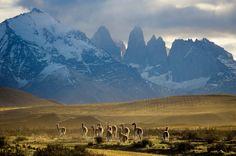 Lua-de-mel no Chile