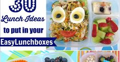 30 Lunch Ideas to Put In Your EasyLunchboxes
