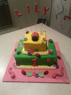 Lady beetle 1st birthday
