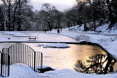 @southwalesargus PIC OF THE DAY: A chilly Pontypool Park in the winter sun Pic: MIKE LEWIS