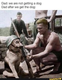 tiktok anime Dad: we are not getting a dog Dad aft - graduation German Soldiers Ww2, German Army, Anime Dad, Germany Ww2, War Dogs, War Photography, History Memes, Historical Pictures, Military Art