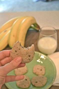 Banana Chocolate Chip Cookies = No Sugar Next time I am going to do 2 bananas instead of only 1... actually really good!
