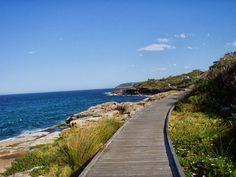 sydney beach curl curl - Hľadať Googlom