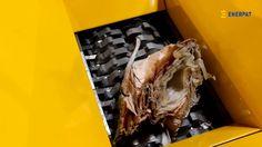 Enerpat China Jumbo Bag Shredder