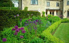 Garden design portfolio: Nicholsons Garden Design, Oxfordshire.                          Must find some allium and other tall purple pops for the garden.