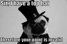 pug top hat