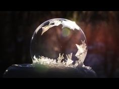 A photographer in St. Paul, Minnesota captured this mesmerizing footage of soap bubbles freezing in frigid January conditions... It looks like time-lapse but it's actually in real time!  | Earth | EarthSky