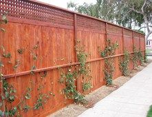 Redwood Privacy Fence, Lattice Topper Gates and Fencing Stout Design Build Los Angeles, CA