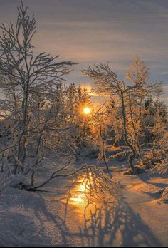 Winter sunrise in Norway