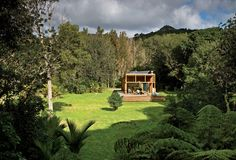 Two doctors wanted their typical New Zealand home to function as simply as it looks.  YOU ARE HEREdwell > HOUSES WE LOVE BACH TO NATURE