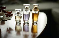 ずっと嗅いでいたいイイ香り♡SNSで話題沸騰『shiro』の香りアイテム - LOCARI(ロカリ)
