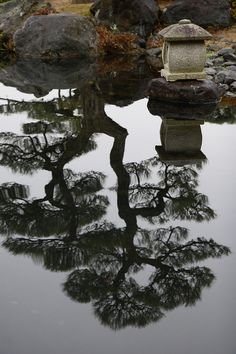 myfotolog:  japanese garden on flickr