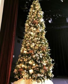 Gold Ornament Christmas Tree Gold Ornaments, Christmas Tree Ornaments, Rustic Garden Wedding, Wedding Coordinator, Christmas Wedding, Fundraising, Holiday Decor, Home Decor, Xmas
