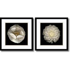 Artist: Neil Seth Levine</li><li>Title: Levine Florals- set of 2</li><li>Frame: Black satin deep profile 0.75-inch wood</li><li>Matte: Seashell/ oyster bay</li><li>Outside dimensions: 17 inches high x 17 inches wide