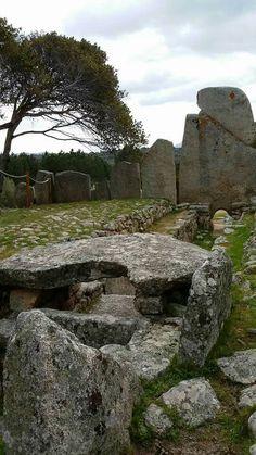 Tomba di giganti LI LOLGHI - Arzachena. #Sardinia