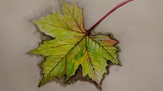 Tuschezeichnung, Herbstblatt Si.Pa. Plants, Atelier, Ink Drawings, Fall Leaves, Human Body, Painting Art, Kunst, Plant, Planets