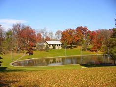 Fall colors in Rapid Run Park.