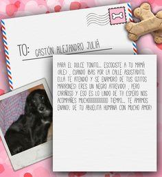 Valentine's Day Note for Gastón Alejandro Juliá from Lilian de Juliá on 3MillionDogs.com