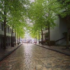 Rain day.  #raincity #dailyhivevan #streetphotography #goandgetit #ppcr #westcoastlife #granvilleisland #friday #tgif #instagram #landscape #wetday #urbanlivingart #photography #offfortheweekend http://tipsrazzi.com/ipost/1508346694445444432/?code=BTuuVO4ji1Q