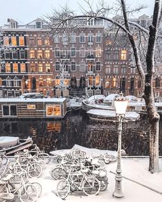 Called by many as Holland, the city of Amsterdam is the most checked out center in the Netherlands. Recent statistics have revealed that more than million travelers are pertaining to check out Amsterdam each year. Amsterdam Winter, Amsterdam City, Amsterdam Travel, Amsterdam Netherlands, Amsterdam Christmas, Berlin Winter, Rome Winter, Prague Winter, Chicago Winter