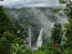 Cachoeira de Tad Fane, no Laos. Fotografia: B℮n / Mibralegare no Indulgy. Ecuador, Rain Wallpapers, Forest Pictures, Amazon Rainforest, Rainforest Trees, Disney Films, Disney Parks, Disney Pixar, Tarzan