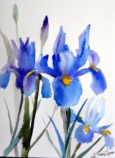 Blue Irises, original watercolor painting, garden flowers, painting, original art, minimalist painting 12 X 9 in    http://www.etsy.com/listing/130528496/blue-irises-original-watercolor-painting?ref=shop_home_active