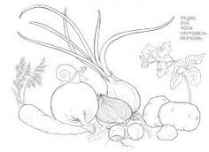 Veggies Coloring Page From Carrots Category Select 30471 Printable Crafts Of Cartoons Nature Animals Bible And Many More