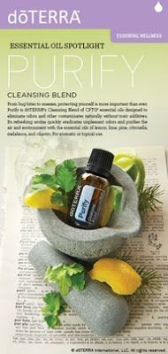 purify essential oil blend.