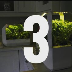 There are only 3 days left to vote pledge and share our pitch.  PLEASE help out and give us your vote. It makes a massive difference.  http://ift.tt/1r9uTUP  #VOOM  #business #Startup #salad #grow #green #growing #greens #herb #herbs #nature #natural #plant #plants #hydroponics #crowdfunder #crowdfunding #fogponics #aeroponics #planting #food #spring #summer #health #sustainable #sustainability #smarthome #control #kickstarter #indiegogo by lettusgrow