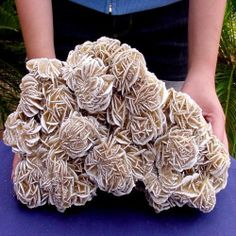 OUR FINEST SPECTACULAR GALLERY SIZE 10 INCH DESERT ROSE SELENITE CRYSTAL CLUSTER