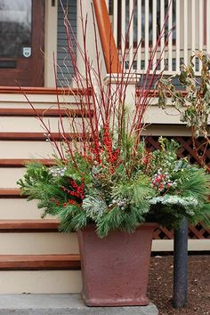 Bright Redtwig Dogwood branches add a little edge to large containers, as seen in this Topiarius design. Tuck them into indoor containers as well for a dramatic vertical effect.