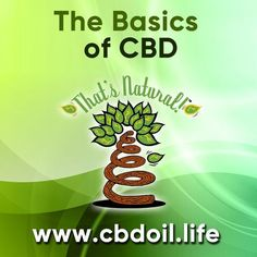 There are thousands of research studies done on CBD and hundreds in progress right now!  Non-psychoactive cannabinoids like CBD can help many people through their Endocannabinoid System!  See more about That's Natural full spectrum CBD-rich hemp oil at www.cbdoil.life and @cbdhempoil and find us in the #Aspen Valley right outside of #Basalt at our That's Natural Life Force Market!  #research #wellness #holistic #natural #momlife #carbondale #basalt #aspen #glenwoodsprings #colorado…
