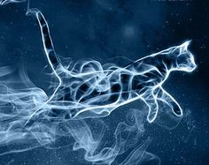 Cat patronus  I love the action of this but would prefer a stag