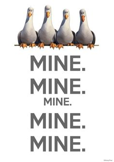 I still say this when I see seagulls