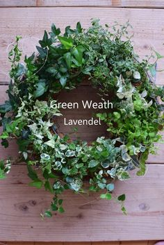 Ivy Green Wreath (group planting) – Photography World Greenery Wreath, Wreaths And Garlands, Christmas Greenery, Christmas Wreaths To Make, Beautiful Flower Arrangements, Beautiful Flowers, Container Flowers, Dried Flowers, Planting Flowers