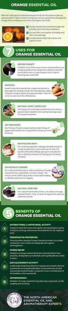 Orange Essential Oil Uses & Benefits