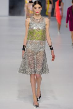 Christian Dior   Resort 2014 Collection   Style.com