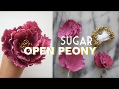 How to Make Gumpaste Open Peony | Sugar Flowers Tutorial | Marian Studio - YouTube
