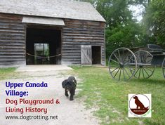 Pet Friendly Ottawa: Homesteading with the Dog at Upper Canada Village, Ontario | Dog Trotting