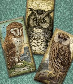 1x2 Inch Domino Tile Images - Victorian Textured Owls with Antique Maps,  Scroll and Script - Digital Collage Sheet