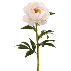Club Pack of 12 Artificial Light Peach Peony Silk Flower Sprays 28 - White