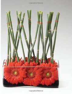 Ikebana Style: 20 Portable Flower Arrangements Perfect for Gift-Giving (Make Good: Crafts + Life): Keiko Kubo: 9781590306734: Amazon.com: Books