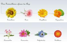 Bildergebnis für sommerblumen Bouquet Tattoo, Tattoo Project, Delicate, Stud Earrings, Tattoos, Flowers, Projects, Color, Calendula