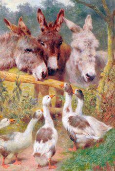 William Weekes _ http://doina-touchinghearts.blogspot.fr/2012/11/donkey-paintings.html