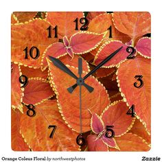 Orange Coleus Floral Square Wall Clock