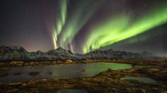 I was searching the internet to find some Norway Northern Lights Tour and trips and came across this wonderful website which provides amazing Northern lights trips to Iceland, Finland and many other places with wonderful deals. For more, visit http://www.thevillaescape.com/